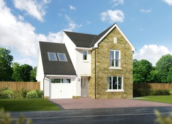 "Thumbnail 4 bed detached house for sale in ""Whitekirk"" at Newlands Drive, Portlethen, Aberdeen"
