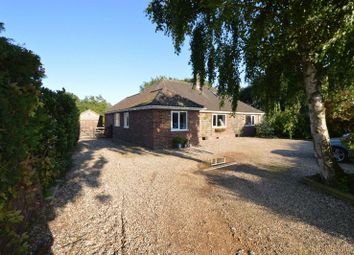 Thumbnail 5 bed property for sale in Kirstead Green, Kirstead, Norwich