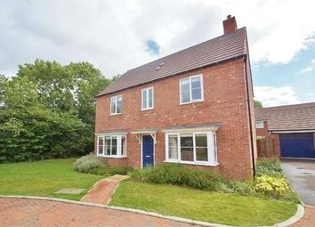 Thumbnail 4 bed property to rent in Elder Avenue, Rugby