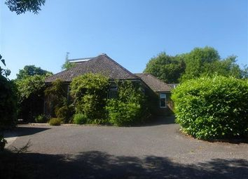 Thumbnail 4 bedroom bungalow to rent in Fontmell Magna, Shaftesbury