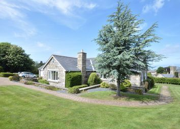 Thumbnail 5 bedroom bungalow for sale in Orchard Loaning, Rennington, Alnwick