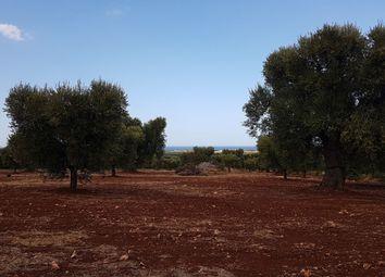 Thumbnail Land for sale in Viale Foggia, Carovigno, Brindisi, Puglia, Italy