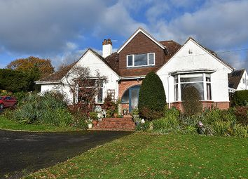 Thumbnail 4 bed detached house for sale in Main Road, Pinhoe, Exeter