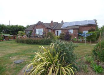 Thumbnail 3 bed bungalow for sale in Black Dog, Crediton