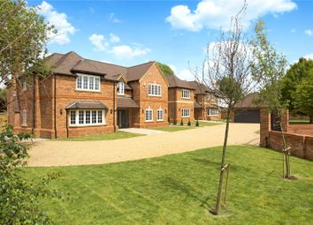 Thumbnail 5 bedroom detached house for sale in Cinnamon Tree Site, Maidens Green, Winkfield, Windsor
