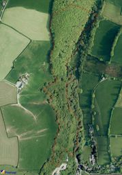 Thumbnail Land for sale in Talog, Carmarthen, Carmarthenshire