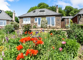 Thumbnail 3 bedroom detached bungalow for sale in Sydnope Hill, Two Dales, Matlock