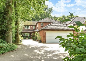 Thumbnail 6 bed detached house for sale in Colden Common, Winchester, Hampshire