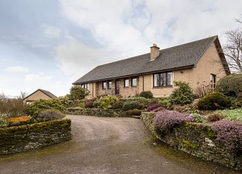 Thumbnail 4 bed bungalow for sale in Aberlemno, Forfar, Angus