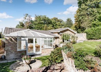Thumbnail 4 bed detached bungalow for sale in Prior Road, Camberley GU15,