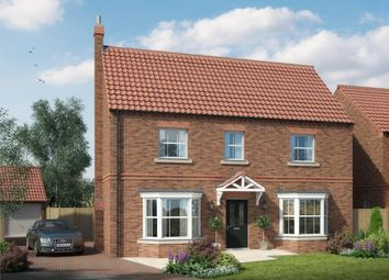 Thumbnail 3 bed detached house for sale in Main Street, Thorganby, York