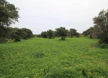 Thumbnail Land for sale in Ozankoy, Kyrenia