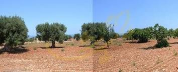 Thumbnail Land for sale in Polignano A Mare, Italy