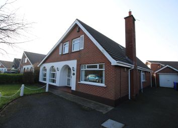 Thumbnail 4 bed detached house to rent in Belgravia Road, Bangor