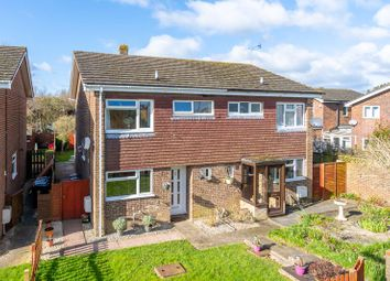 Thumbnail 3 bed semi-detached house for sale in Haleybridge Walk, Tangmere, Chichester