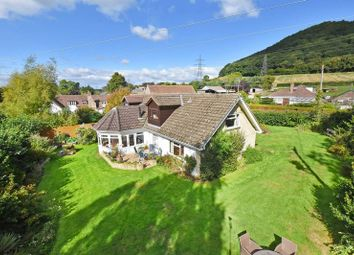 Thumbnail 4 bed detached bungalow for sale in Coughton, Ross-On-Wye
