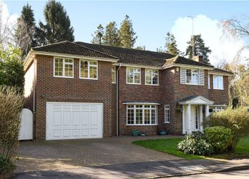 Thumbnail 4 bed detached house for sale in Priors Wood, Crowthorne, Berkshire