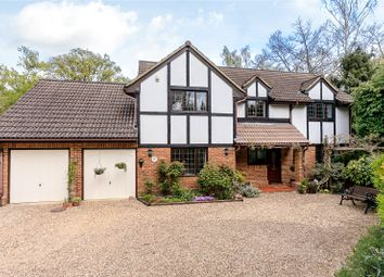 Thumbnail 5 bed detached house to rent in Beech Close, Cobham, Surrey