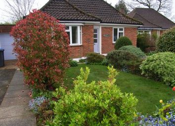 Thumbnail 3 bed bungalow to rent in Oakfield Close, Lindfield