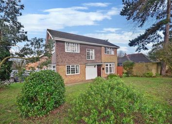 Thumbnail 4 bed detached house for sale in Warley Hill, Brentwood, Essex