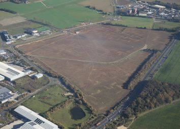 Thumbnail Industrial for sale in Moreton Hall, Bury St Edmunds