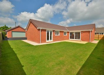 Thumbnail 3 bed detached bungalow for sale in Isabella Road, Tiverton