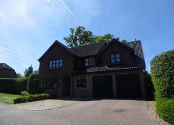 Thumbnail Detached house to rent in Cranbourne Drive, Otterbourne, Winchester