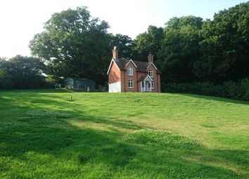 Thumbnail 3 Bed Detached House To Rent In Sotherington Lane Selborne Alton