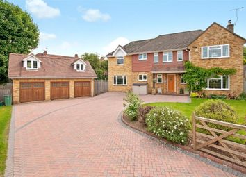 Thumbnail 4 bed detached house to rent in Cedar Close, Dorking