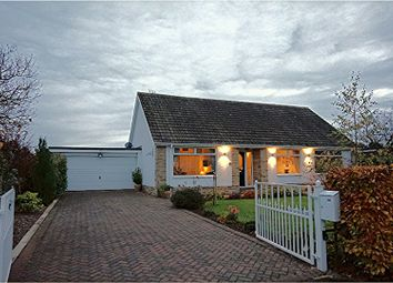 Thumbnail 5 bedroom bungalow for sale in Woodside, Hutton Rudby, Yarm