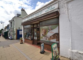 Thumbnail Commercial property for sale in The Pet Shop, Alresford