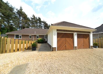 Thumbnail 4 bed bungalow for sale in Lions Lane, Ashley Heath, Ringwood