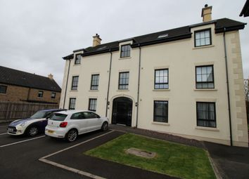Thumbnail 2 bed flat to rent in Lady Wallace Court, Lisburn