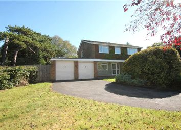 Thumbnail 5 bed detached house to rent in Pine Place, Banstead