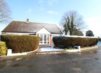 Thumbnail 3 bed bungalow to rent in Braiswick, Colchester