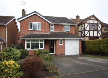 Thumbnail 4 bed detached house to rent in Swanmore Road, Littleover, Derby