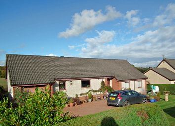 Thumbnail 3 bed detached bungalow for sale in Crimson Hill, Gavinton, Duns