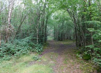 Post Wood, Shadoxhurst Road, Shadoxhurst TN26. Land for sale