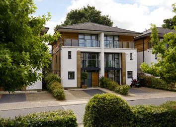 Thumbnail 4 bed semi-detached house to rent in Whitelands Crescent, Southfields