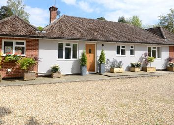 Thumbnail 4 bed detached bungalow for sale in Sandhurst Road, Finchampstead, Wokingham