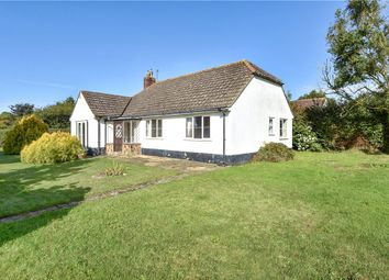 Thumbnail 3 bed detached bungalow for sale in Goldsmith Lane, All Saints, Axminster, Devon