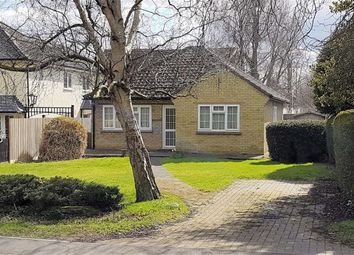 Thumbnail 2 bedroom detached bungalow to rent in The Plain, Epping