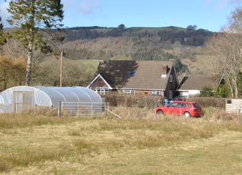 Thumbnail 4 bed detached bungalow for sale in Carno, Caersws