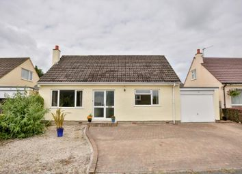 Thumbnail 3 bed bungalow to rent in Wybourn Drive, Onchan