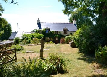 Thumbnail 3 bedroom detached house for sale in Jeffreyston, Kilgetty