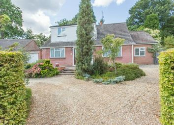 Thumbnail 4 bed bungalow for sale in Rare Opportunity. King Edwards Road, Ascot, Berkshire