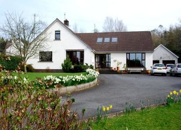 Thumbnail 5 bedroom detached house for sale in Mountain Road, Newtownards