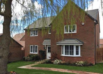 """Thumbnail 4 bed detached house for sale in """"Knightsbridge"""" at Stanley Close, Corby"""