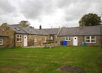 Thumbnail 4 bed cottage for sale in Church Hill, Chatton, Northumberland
