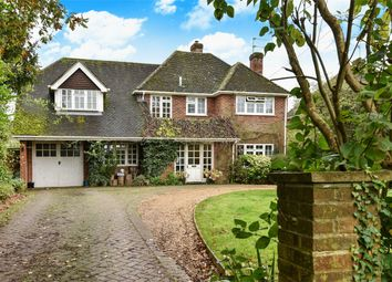 Thumbnail 4 bed detached house for sale in Upper Wield, Alresford, Hampshire